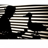Rumpelstiltskin,Private Eye presented by Black Box Theatre at Black Box Theatre, Colorado Springs CO