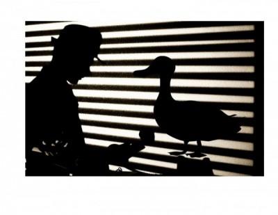 Rumpelstiltskin,Private Eye presented by Rumpelstiltskin,Private Eye at Black Box Theatre, Colorado Springs CO