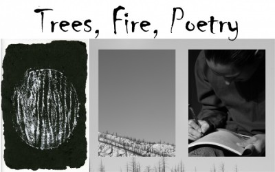 Trees, Fire, Poetry: New Work by Stephanie Von Fange and Luke Cissell presented by Cultural Office of the Pikes Peak Region at Cultural Office of the Pikes Peak Region, Colorado Springs CO