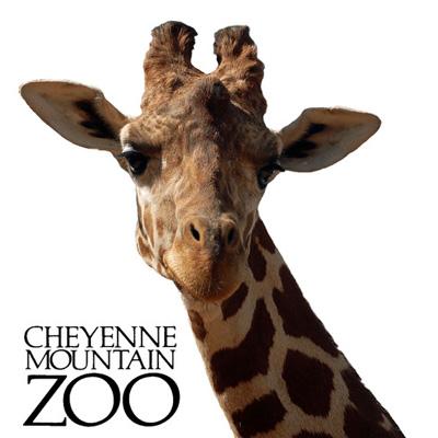 cheyenne-moutain-zoo2