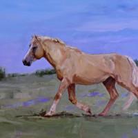 Horse Sense: Form + Function