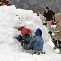 primary-Winter-Nature-Camp--The-Wild-Things-1477848999