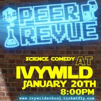 primary-The-Peer-Revue-at-Ivywild-school-1483073441