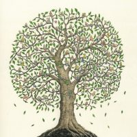 primary-Genealogy-Study-Hall-1485214257