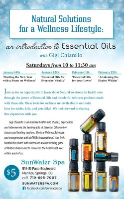 primary-Natural-Solutions-for-a-Wellness-Lifestyle--An-introduction-to-Essential-Oils-with-Gigi-Chiarello-1484153104