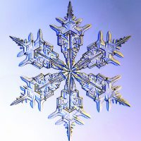 primary-Nature-Adventures--Snazzy-Snowflakes-1484948890