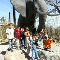 Spring Break Zoo Camps
