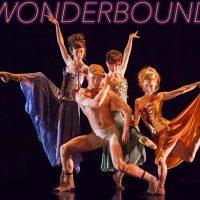 primary-CS-Dance-Theatre-presents-Wonderbound---A-Dangerous-Liaison-1487117922