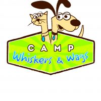 Camp Whiskers & Wags: Spring Edition