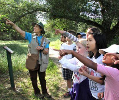 Environmental Education Leader Training