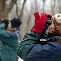 primary-Beginning-Birding-Workshop-1488899275