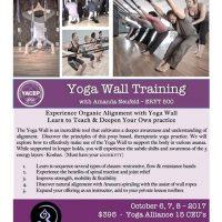 Yoga Wall Training