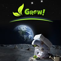 Summer of Discovery: Grow