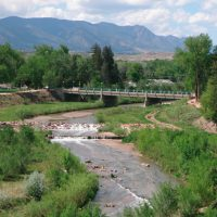 Are There Fish in Fountain Creek?