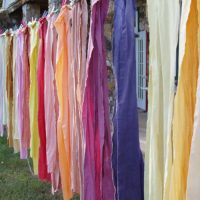 Natural Dyeing: A Color A Day with Donna Brown