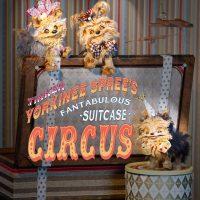 Tinker Yorkinee Spree's Fantabulous Suitcase Circus