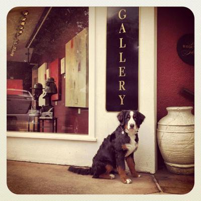 Broadmoor Galleries - Traditional Gallery