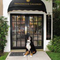Broadmoor Galleries – Western, Wildlife and Sporting Gallery located in Colorado Springs CO