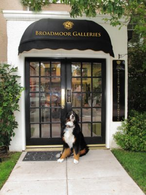 Broadmoor Galleries – Western, Wildlife and Sporting Gallery located in Colorado Springs CO