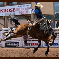 77th Pikes Peak or Bust Rodeo