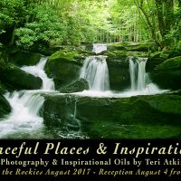 Peaceful Places and Inspirations: Opening Reception
