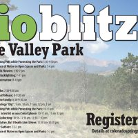 Ute Valley Park Bioblitz