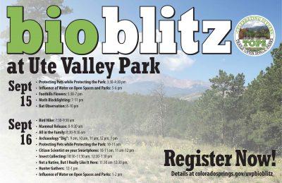 Ute Valley Park Bioblitz