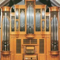 Organ with Friends