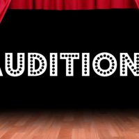 Auditions - 'A Christmas Chaos'
