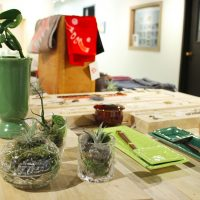 Arts Month First Friday at Cottonwood