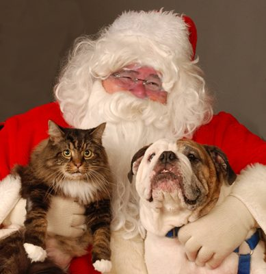 Jingle Bell Walk & Pictures with Santa Paws