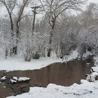 Bear and Fountain Creek Nature Centers' Winter Photo Contest