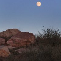 Active Adults Club: Full Moon Hike