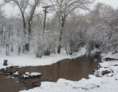 Bear and Fountain Creek Nature Centers' Photo Cont...