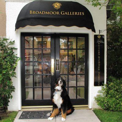 Broadmoor Galleries located in Colorado Springs CO
