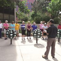 Downtown Walking Tours: Art on the Streets