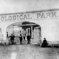 Pikes Peak Regional History Lecture Series: Live and Let live: John Coughlin's Zoo Park