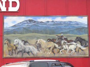 Cowhand Vistas
