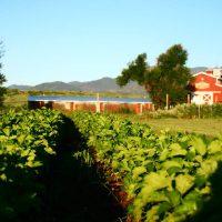 Venetucci Farm located in Colorado Springs CO