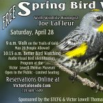 Spring Bird Walk on the Trails of Gold presented by Victor Lowell Thomas Museum at Victor Lowell Thomas Museum, Victor CO