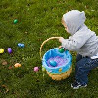 Chocolate Bunny Egg Hunt