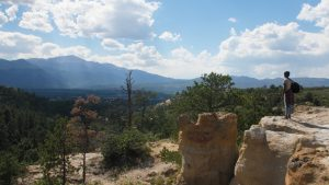 Peak Artists located in Colorado Springs CO