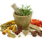 Living in Harmony Through the Ayurveda Way