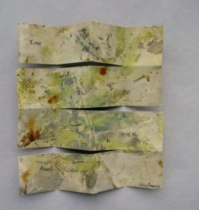 Exploratory Ecoprinting on Paper