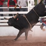 COS Rodeo