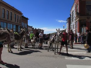 Pack Burro Race presented by Southern Teller County Focus Group at Victor Lowell Thomas Museum, Victor CO