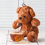 Teddy Bear Tea Party with Girl Scouts