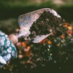Seed Library Event: Back to Eden and Straw Bale Gardening