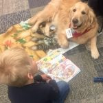 Paws to Read presented by PPLD: Rockrimmon Library at PPLD - Rockrimmon Branch, Colorado Springs CO