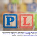 Programs for Kids: Tots and Blocks presented by PPLD: Rockrimmon Library at PPLD - Rockrimmon Branch, Colorado Springs CO